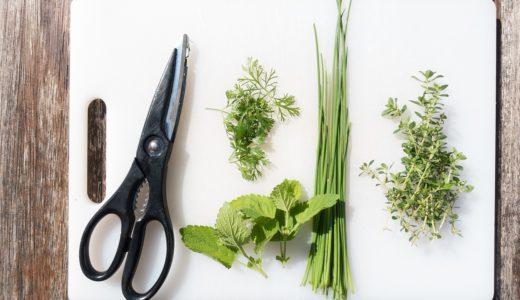 キッチンバサミで何でも切っちゃうと料理がはかどる!便利な使い方やオススメも紹介。